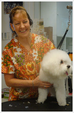pats pedigree pet grooming dog grooming services