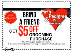 bring a friend and get $5 off coupon on your grooming purchase at Pat's Pedigree